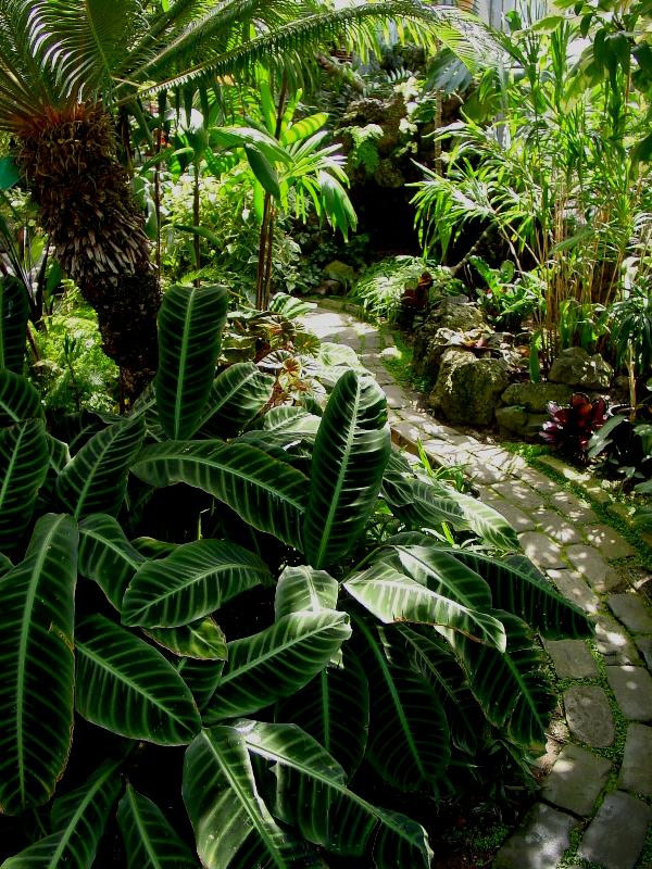 seymour_botanical_conservatory_original